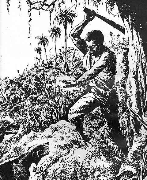 Historia del Pueblo Afrocolombiano  2 De Africa a Amrica